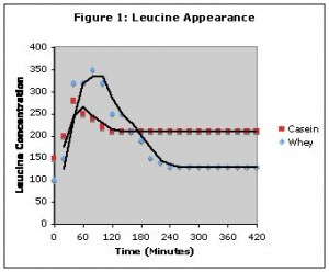 Speed of Digestion for Casein vs. Whey