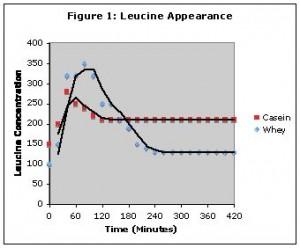 Casein vs. Whey Leucine Appearance