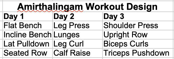 Amirthalingam Workout Design
