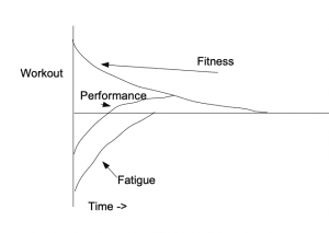 Fitness Fatigue Model of Training
