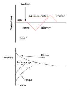 Supercompensation vs. Fitness-Fatigue